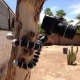 Aquí revisamos el mini tripie para cámara de Joby Gorillapod, te hablo sobre sus usos y que ventajas tiene tener uno en tu producción de video, también te digo […]